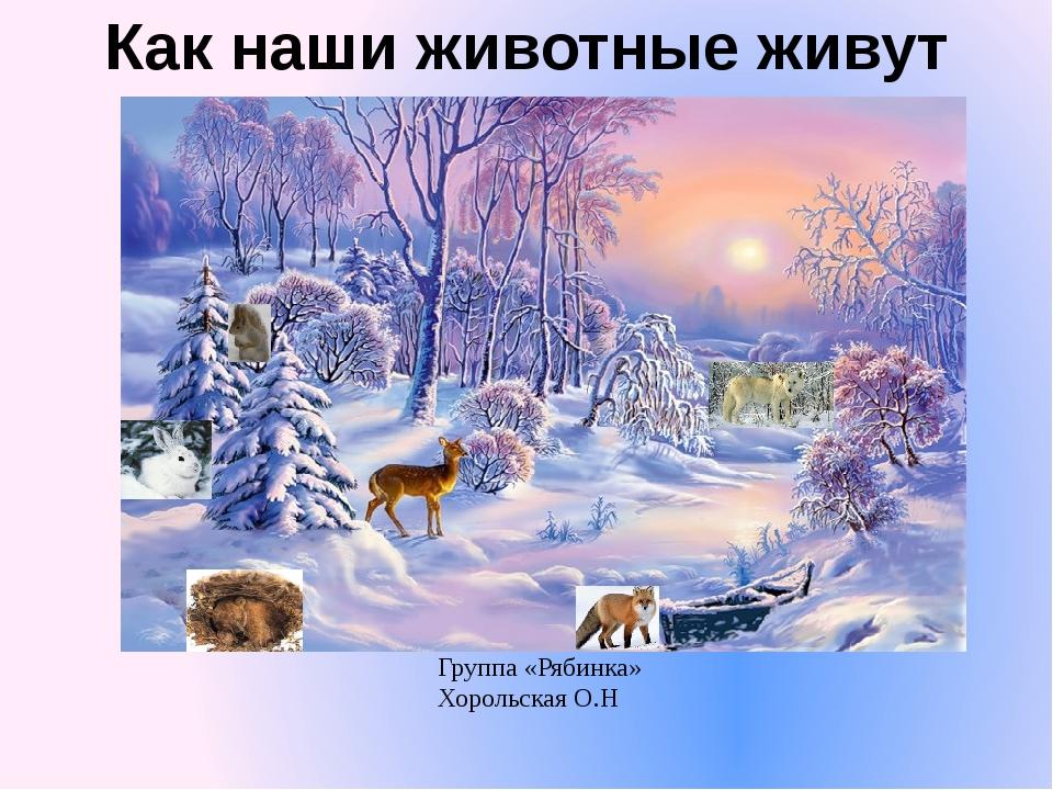Как наши животные живут зимой Группа «Рябинка» Хорольская О.Н