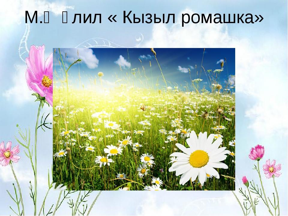 М.Җәлил « Кызыл ромашка»