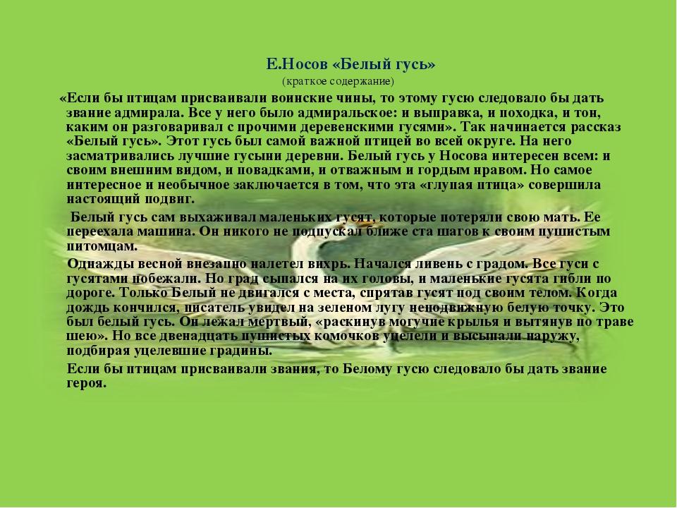 Е.Носов «Белый гусь» (краткое содержание) «Если бы птицам присваивали воинск...