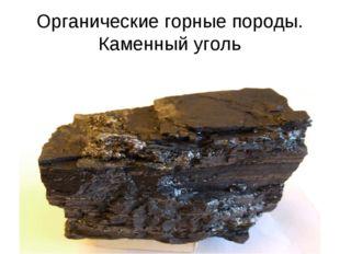 Органические горные породы. Каменный уголь