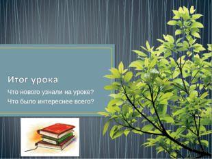 Что нового узнали на уроке? Что было интереснее всего?