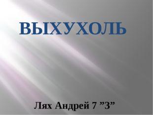 "ВЫХУХОЛЬ Лях Андрей 7 ""З"""