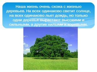 Наша жизнь очень схожа с жизнью деревьев. На всех одинаково светит солнце, на