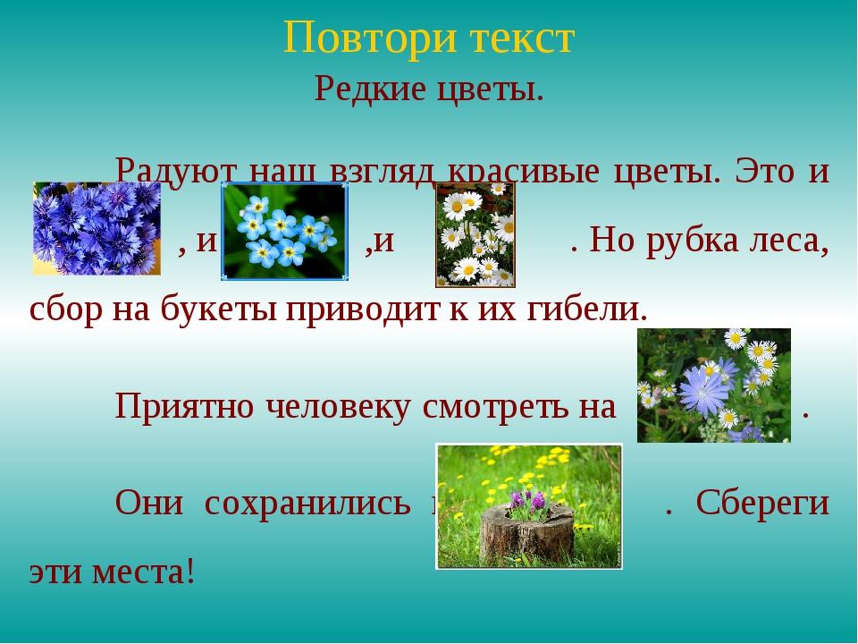 Повтори текст Редкие цветы. Радуют наш взгляд красивые цветы. Это и  , и ,...