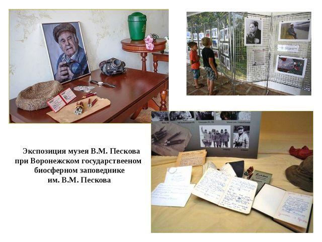 Экспозиция музея В.М. Пескова при Воронежском государствееном биосферном зап...