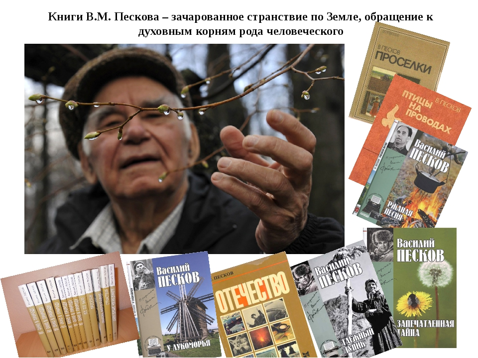 Книги В.М. Пескова – зачарованное странствие по Земле, обращение к духовным к...