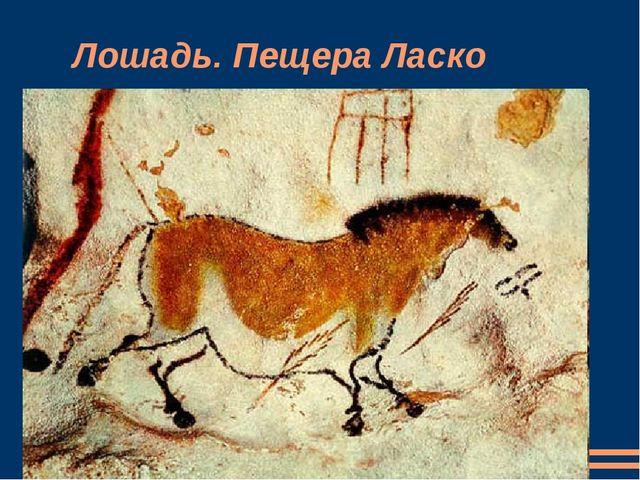 Лошадь. Пещера Ласко