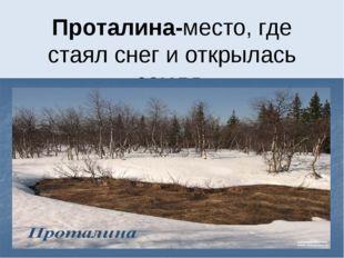 Проталина-место, где стаял снег и открылась земля.