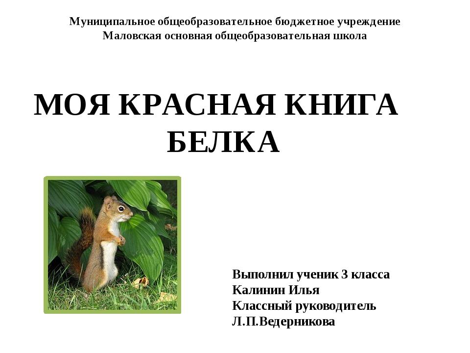Муниципальное общеобразовательное бюджетное учреждение Маловская основная общ...
