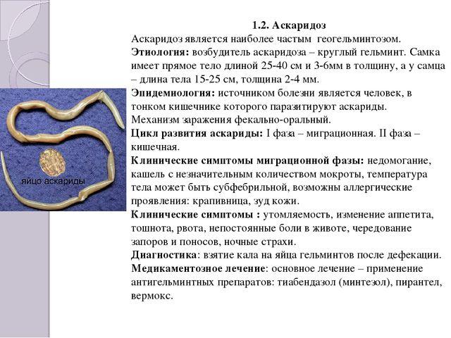 1.2. Аскаридоз Аскаридоз является наиболее частым геогельминтозом. Этиология:...