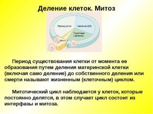 Деление клеток. Митоз Период существования клетки от момента ее образования п
