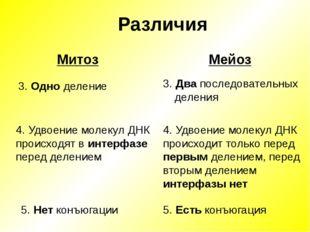 Различия Мейоз 3. Одно деление Митоз 3. Два последовательных деления 4. Удвое