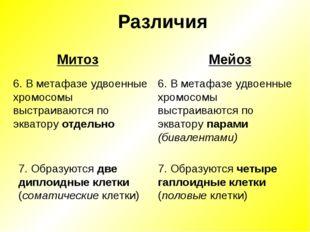Различия Мейоз Митоз 6. В метафазе удвоенные хромосомы выстраиваются по экват