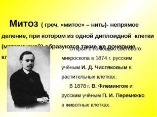 Митоз ( греч. «митос» – нить)- непрямое деление, при котором из одной диплоид