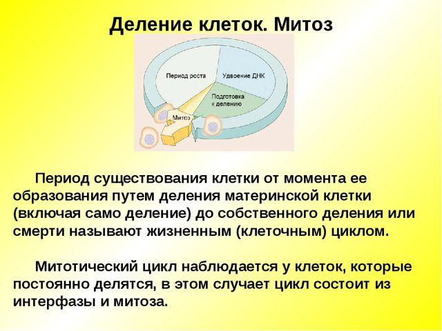 Деление клеток. Митоз Период существования клетки от момента ее образования п...