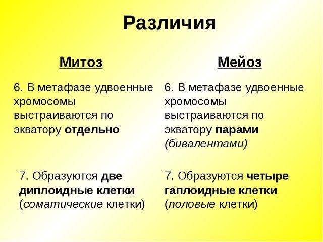 Различия Мейоз Митоз 6. В метафазе удвоенные хромосомы выстраиваются по экват...