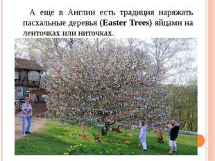 А еще в Англии есть традиция наряжать пасхальные деревья (Easter Trees) яйца