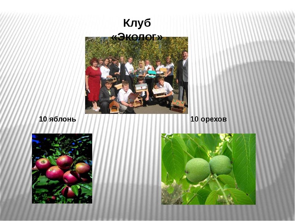 10 орехов Клуб «Эколог» 10 яблонь
