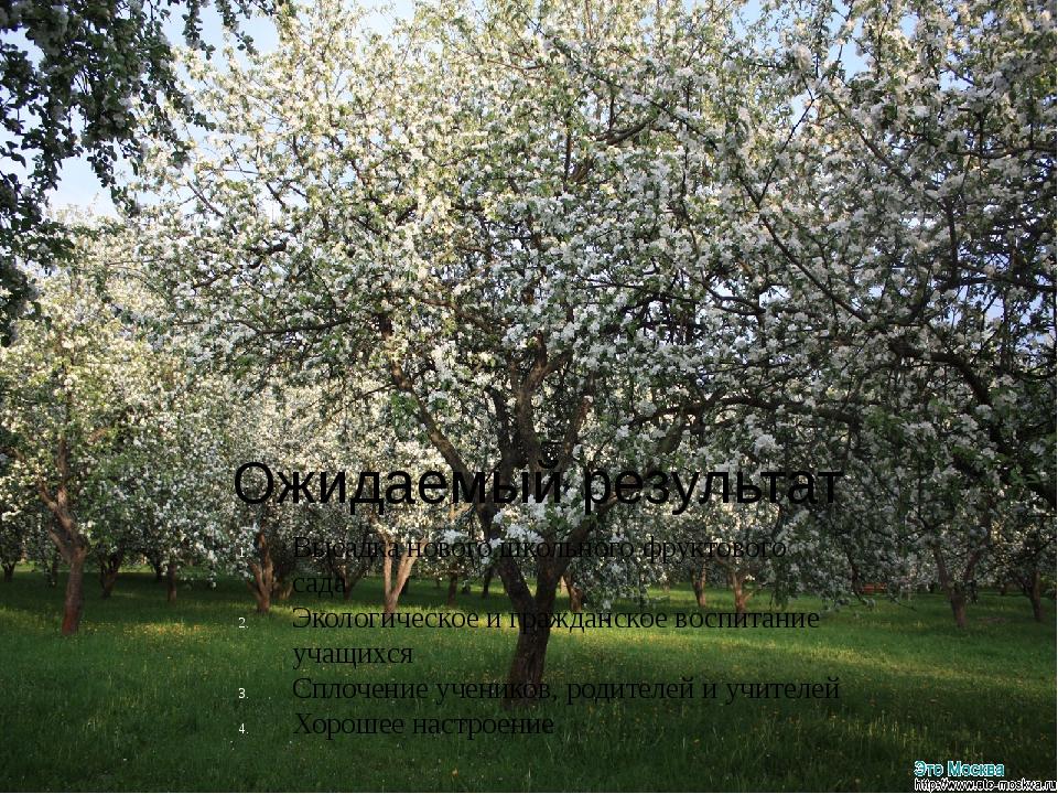 Ожидаемый результат Высадка нового школьного фруктового сада Экологическое и...