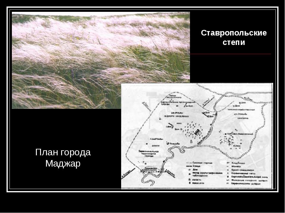 План города Маджар Ставропольские степи