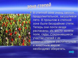В степной зоне очень теплое, продолжительное, засушливое лето. В прошлом в ст