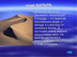 В России пустыни занимают небольшую площадь – по берегам Каспийского моря, к