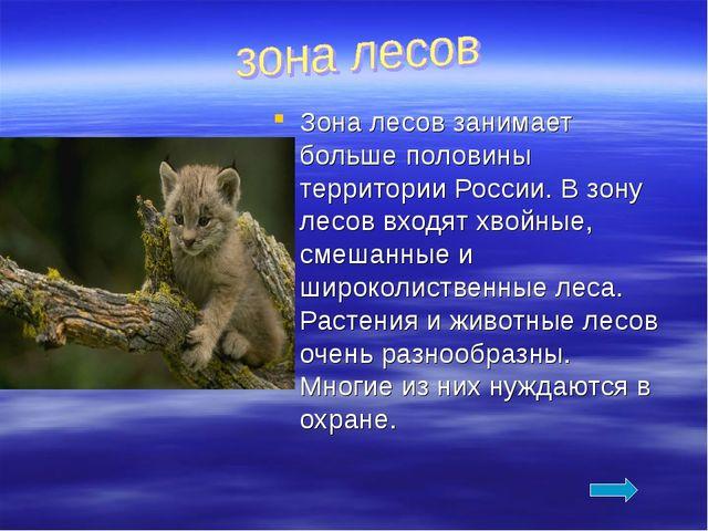 Зона лесов занимает больше половины территории России. В зону лесов входят хв...