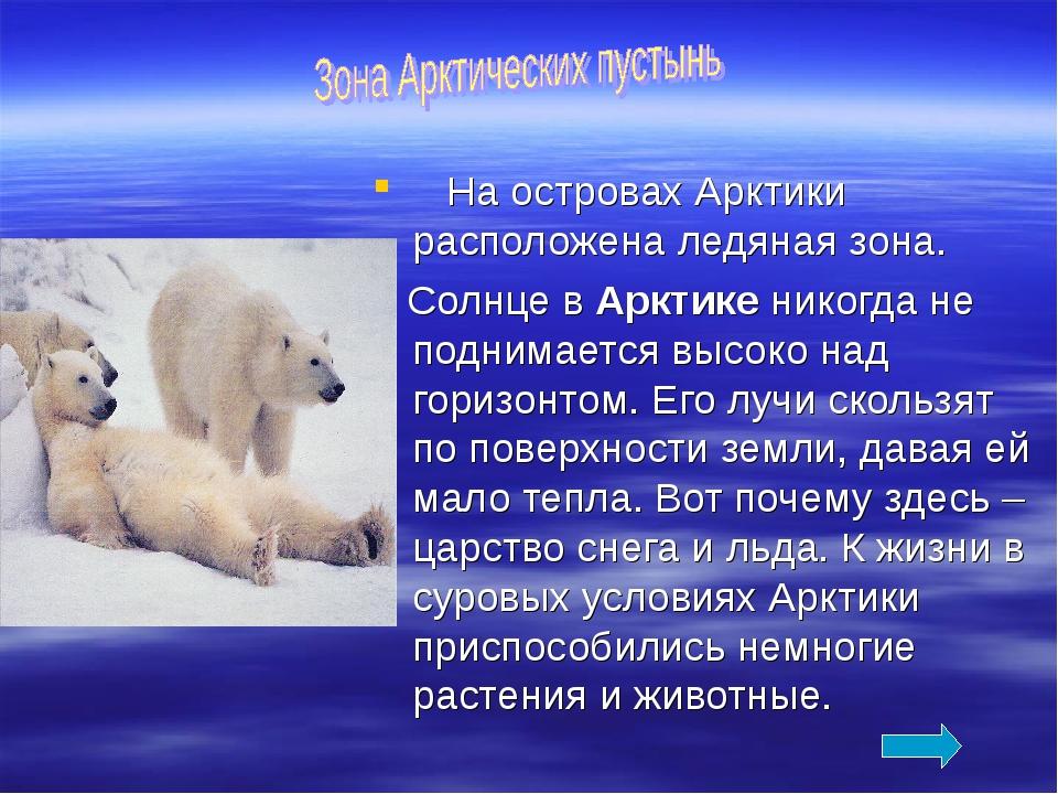 На островах Арктики расположена ледяная зона. Солнце в Арктике никогда не по...