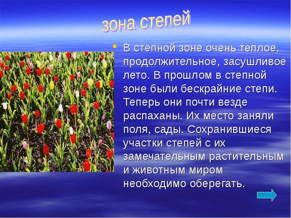В степной зоне очень теплое, продолжительное, засушливое лето. В прошлом в ст...
