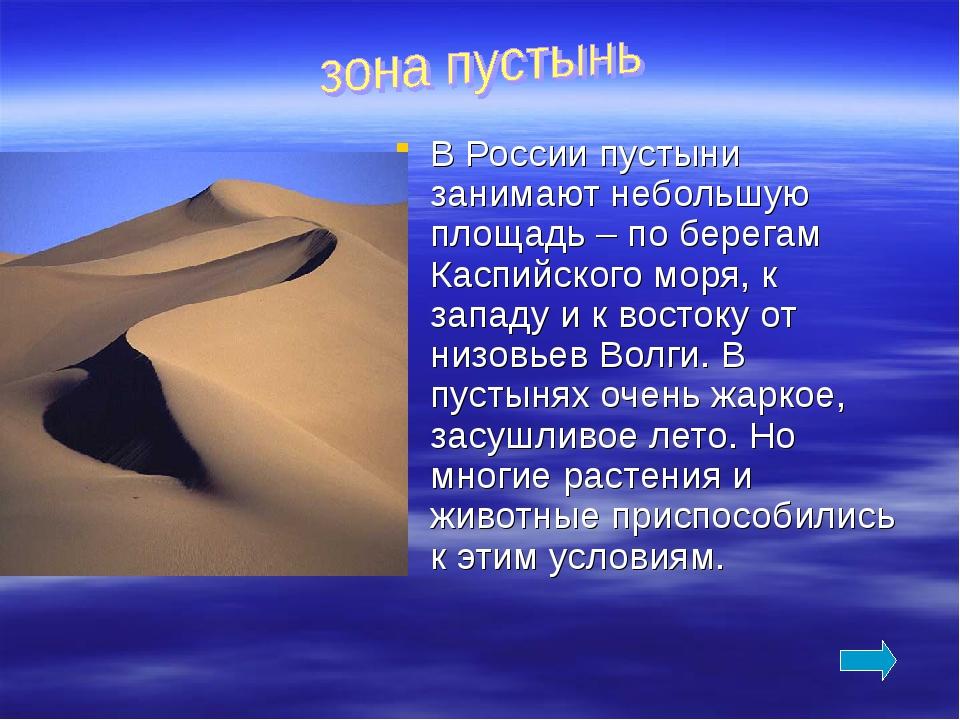 В России пустыни занимают небольшую площадь – по берегам Каспийского моря, к...