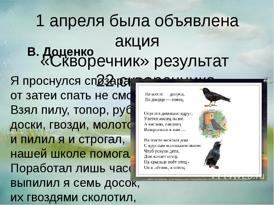 1 апреля была объявлена акция «Скворечник» результат 22 скворечника В. Доценк...