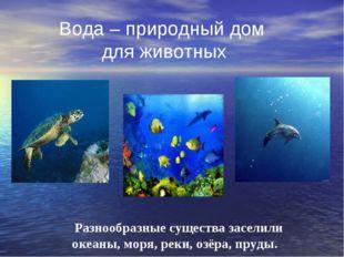 Вода – природный дом для животных Разнообразные существа заселили океаны, мо