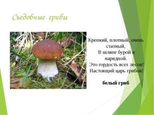 Съедобные грибы Крепкий, плотный, очень статный, В шляпе бурой и нарядной. Эт