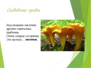 Съедобные грибы Под опавшие листочки дружно спрятались грибочки. Очень хитрые