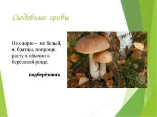 Съедобные грибы Не спорю – не белый, я, братцы, попроще, расту я обычно в бер