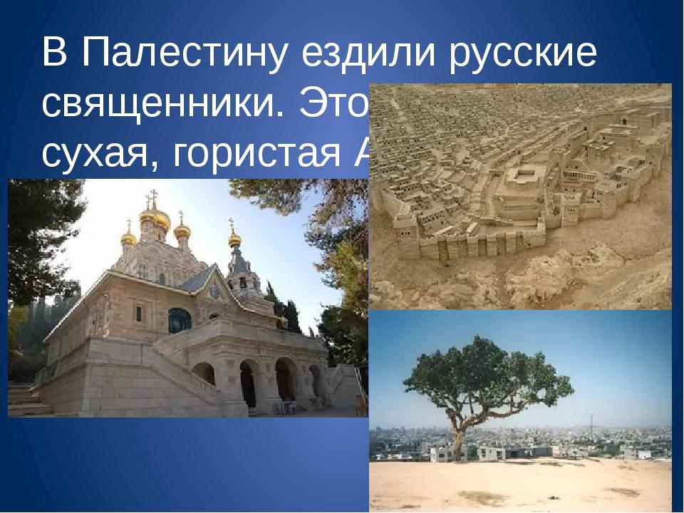 В Палестину ездили русские священники. Это тоже жаркая, сухая, гористая Азия.