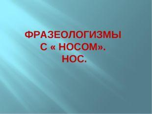 ФРАЗЕОЛОГИЗМЫ С « НОСОМ». НОС.