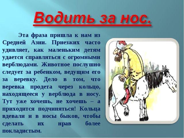Эта фраза пришла к нам из Средней Азии. Приезжих часто удивляет, как маленьк...