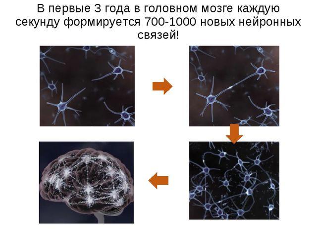 В первые 3 года в головном мозге каждую секунду формируется 700-1000 новых не...