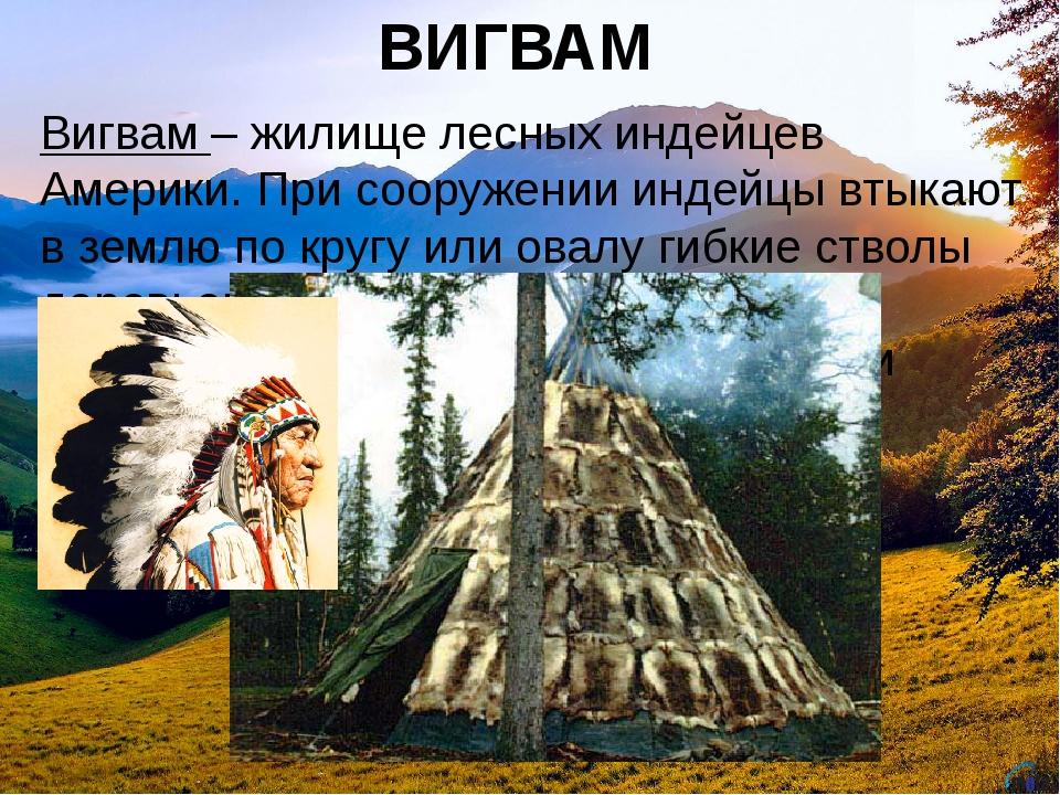 ВИГВАМ Вигвам– жилище лесных индейцев Америки. При сооружении индейцы втыкаю...