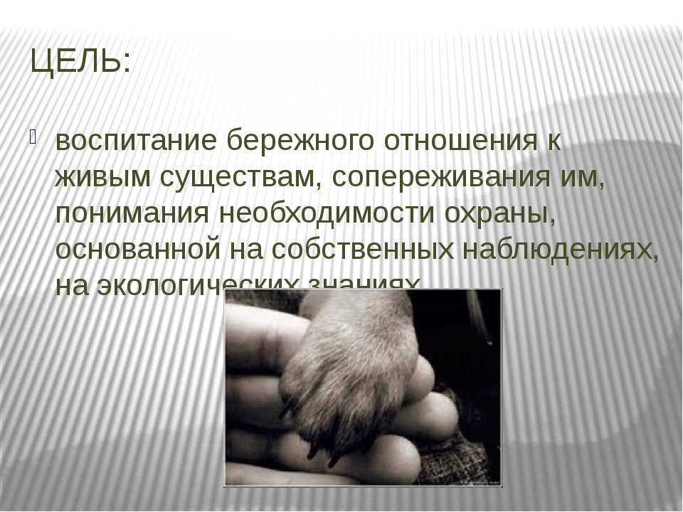 ЦЕЛЬ: воспитание бережного отношения к живым существам, сопереживания им, пон...
