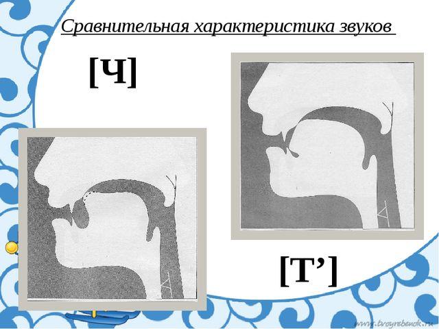 Сравнительная характеристика звуков [Ч] [Т']
