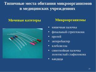 Микроорганизмы кишечная палочка фекальный стрептококк протей энтеробактер кл