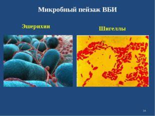 Микробный пейзаж ВБИ Эшерихии Шигеллы *