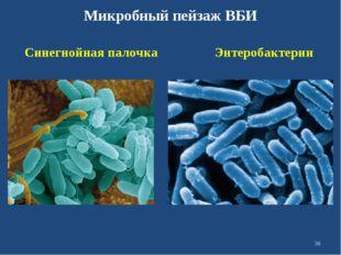 Микробный пейзаж ВБИ Синегнойная палочка Энтеробактерии *