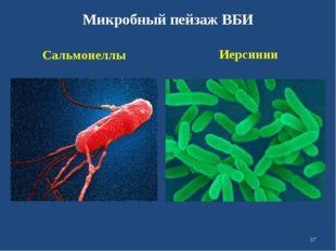 Микробный пейзаж ВБИ Сальмонеллы Иерсинии *