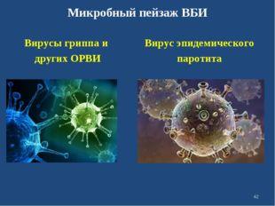 Микробный пейзаж ВБИ Вирусы гриппа и других ОРВИ Вирус эпидемического паротит