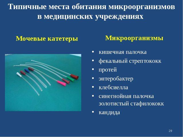 Микроорганизмы кишечная палочка фекальный стрептококк протей энтеробактер кл...