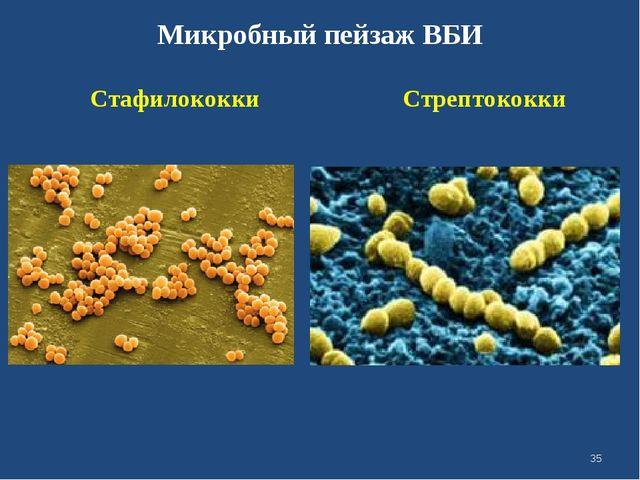 Микробный пейзаж ВБИ Стафилококки Стрептококки *