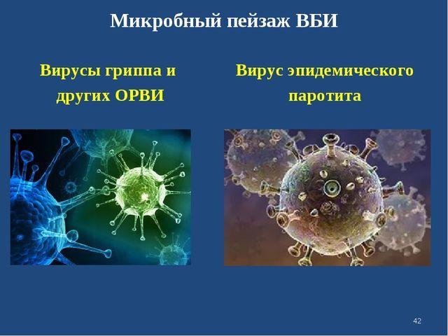 Микробный пейзаж ВБИ Вирусы гриппа и других ОРВИ Вирус эпидемического паротит...